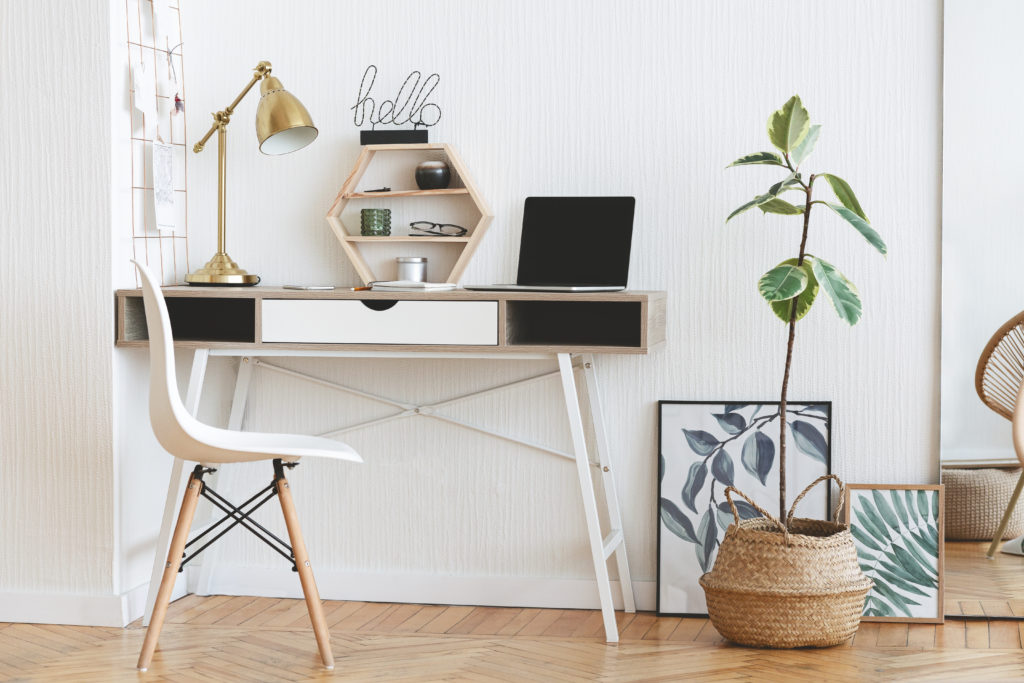 Modern home working place with laptop, stylish lamp and plant in pot over white wall background